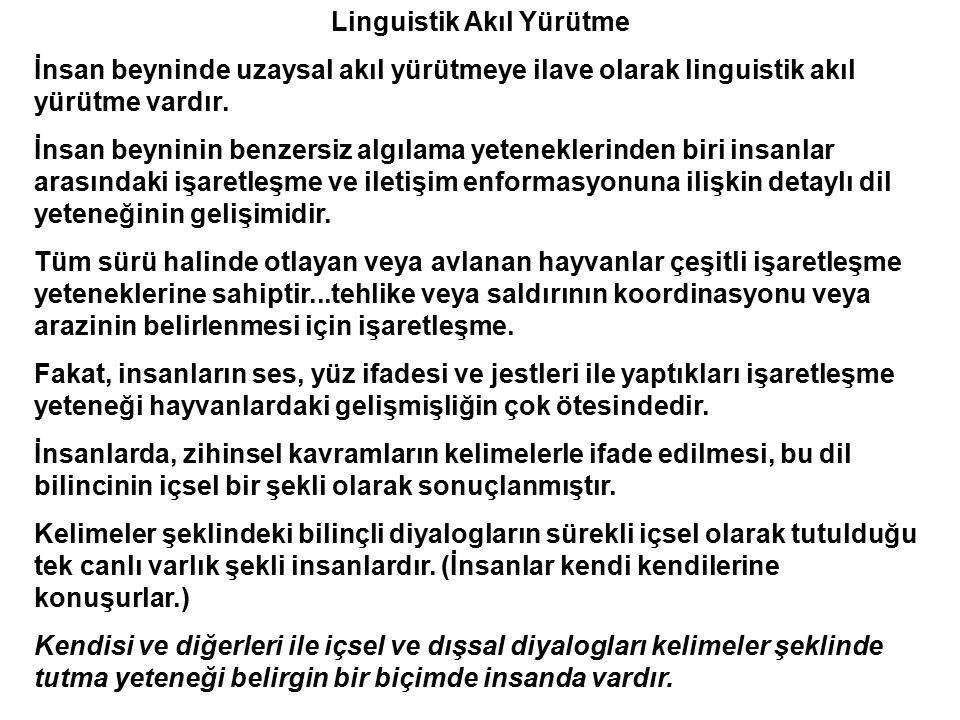 Linguistik Akıl Yürütme