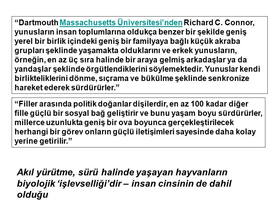 Dartmouth Massachusetts Üniversitesi'nden Richard C