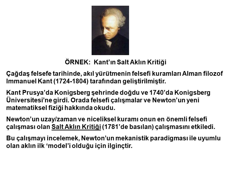ÖRNEK: Kant'ın Salt Aklın Kritiği