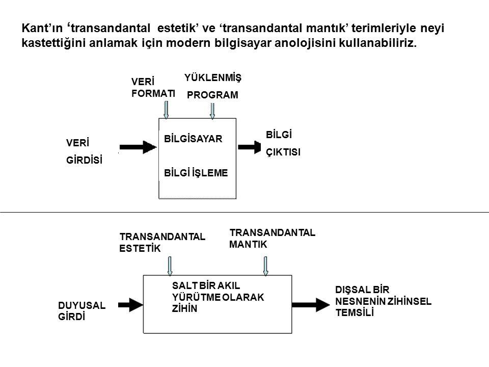 Kant'ın 'transandantal estetik' ve 'transandantal mantık' terimleriyle neyi kastettiğini anlamak için modern bilgisayar anolojisini kullanabiliriz.