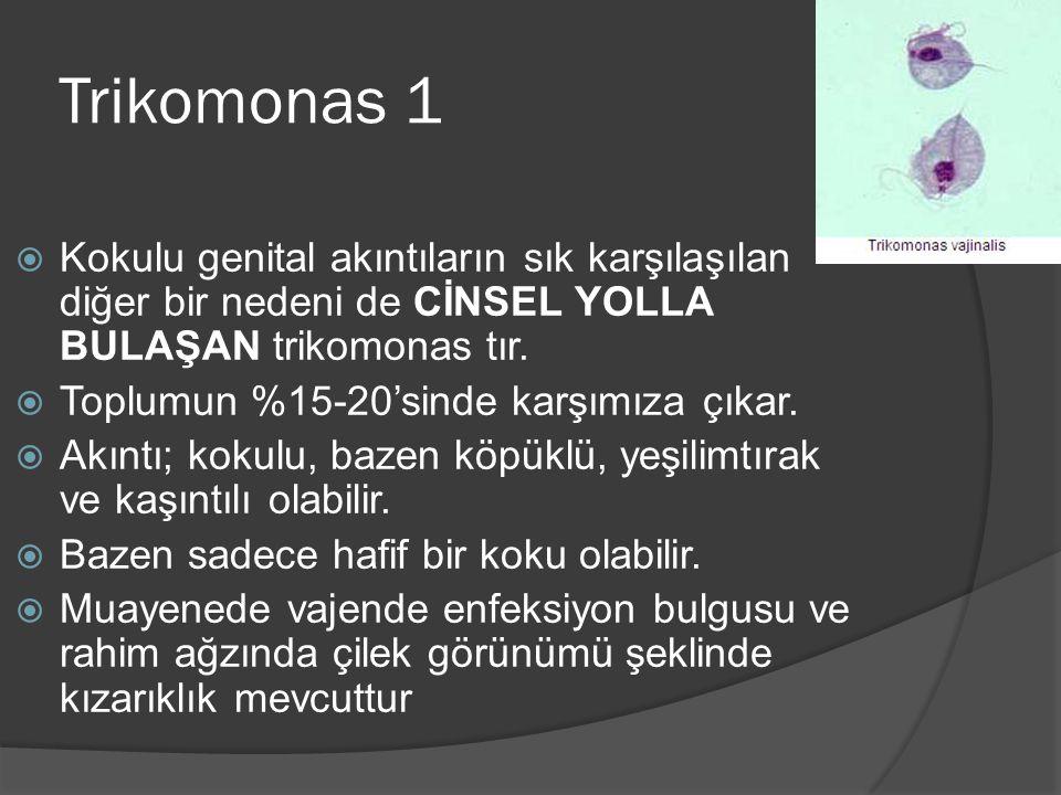 Trikomonas 1 Kokulu genital akıntıların sık karşılaşılan diğer bir nedeni de CİNSEL YOLLA BULAŞAN trikomonas tır.