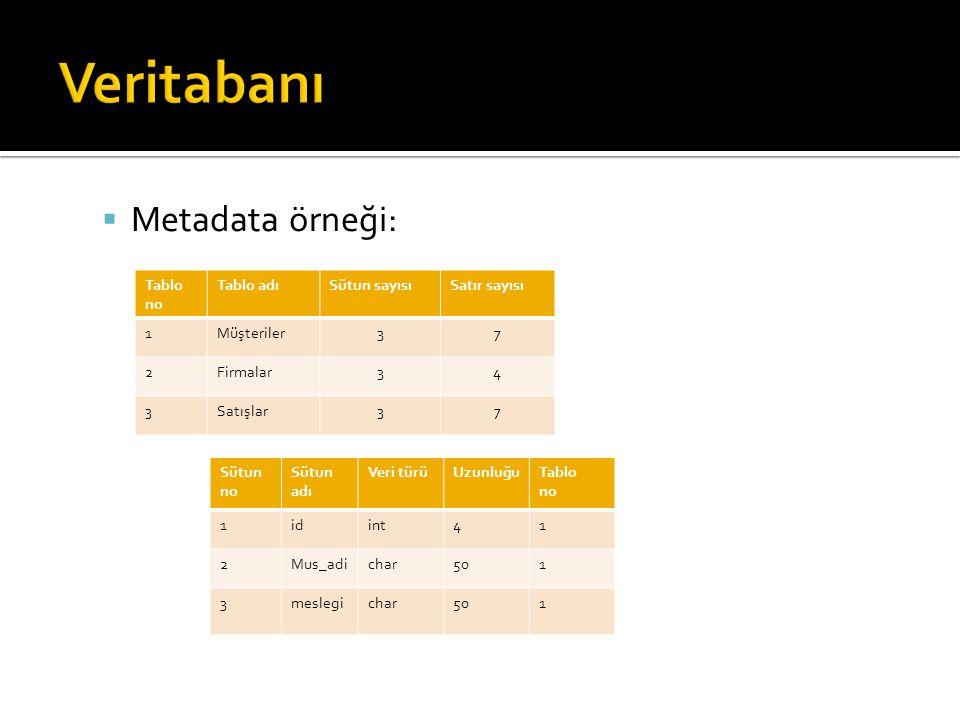 Veritabanı Metadata örneği: Tablo no Tablo adı Sütun sayısı