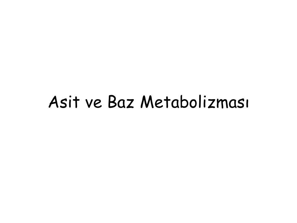 Asit ve Baz Metabolizması