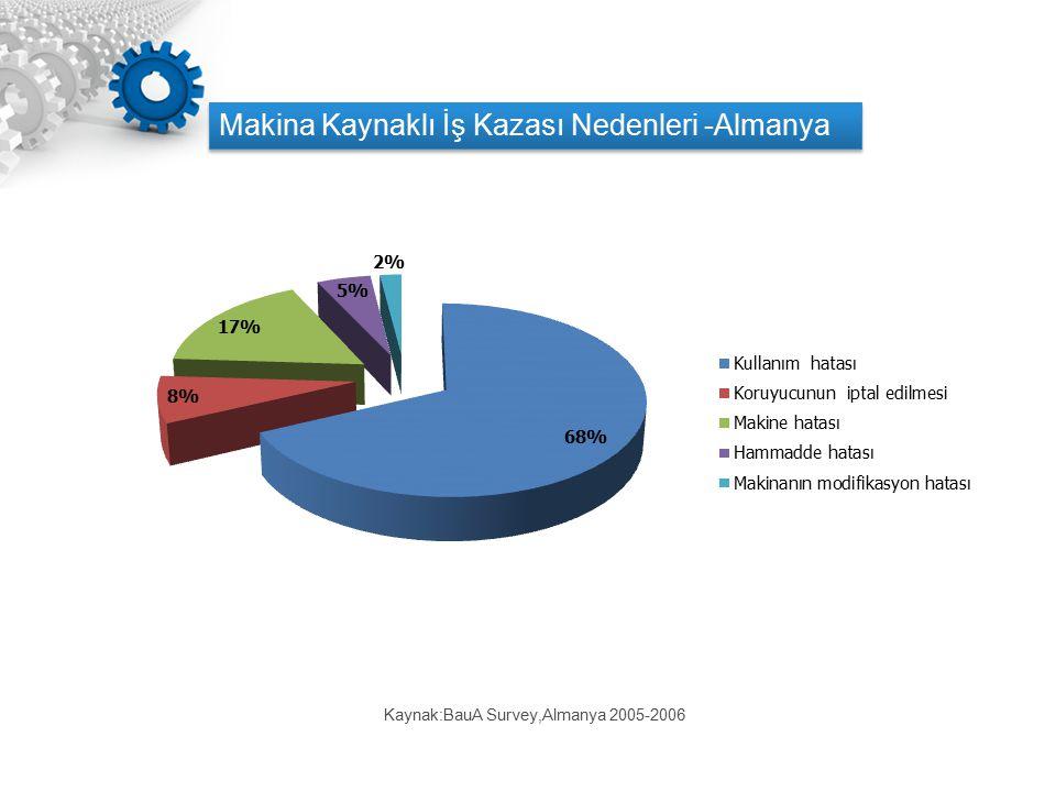 Kaynak:BauA Survey,Almanya 2005-2006