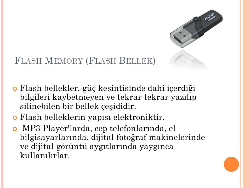 Flash Memory (Flash Bellek)