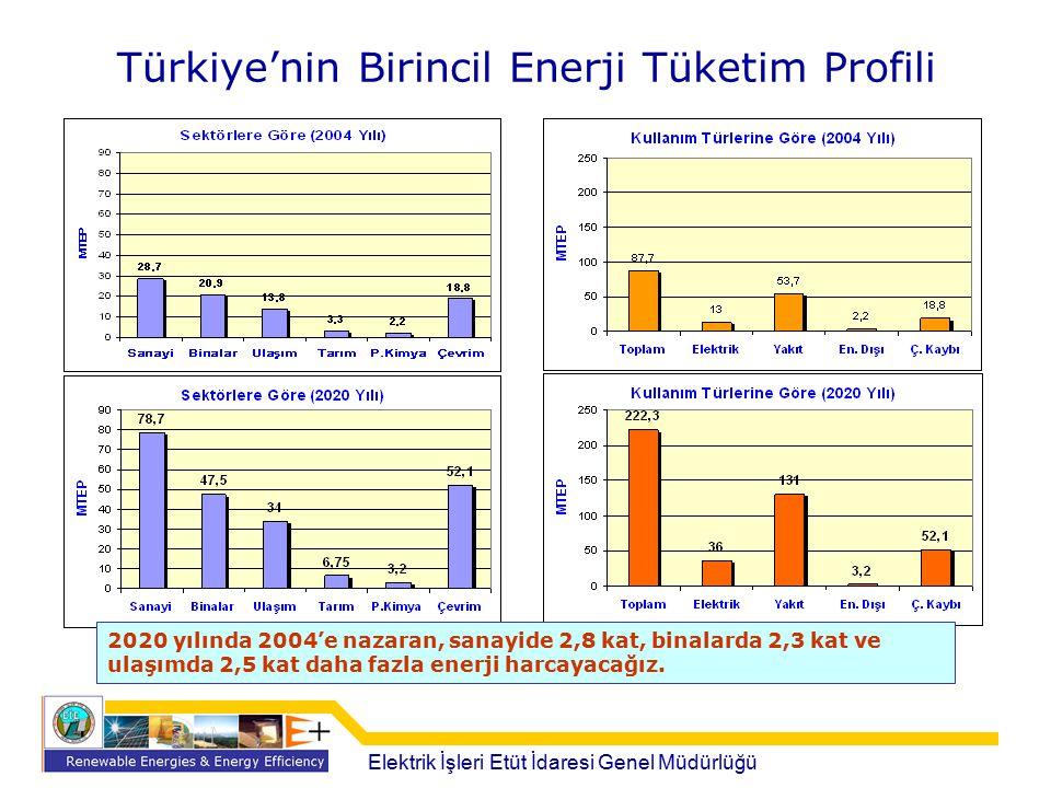 Türkiye'nin Birincil Enerji Tüketim Profili