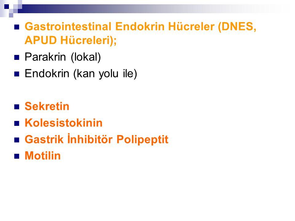 Gastrointestinal Endokrin Hücreler (DNES, APUD Hücreleri);