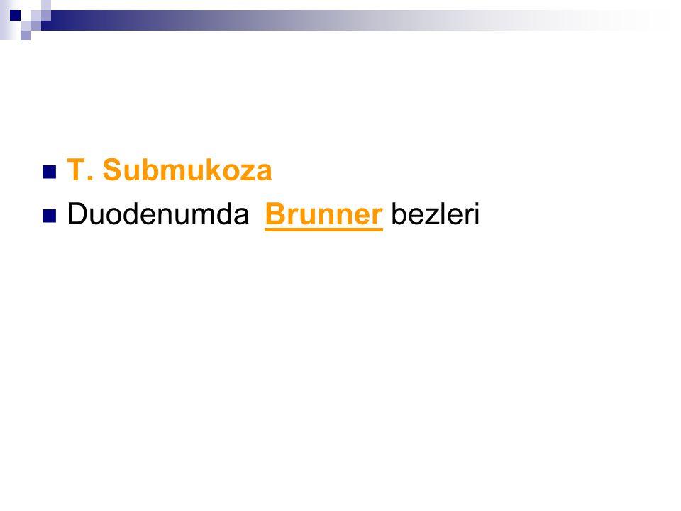 T. Submukoza Duodenumda Brunner bezleri