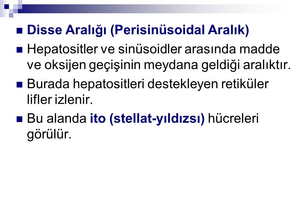 Disse Aralığı (Perisinüsoidal Aralık)