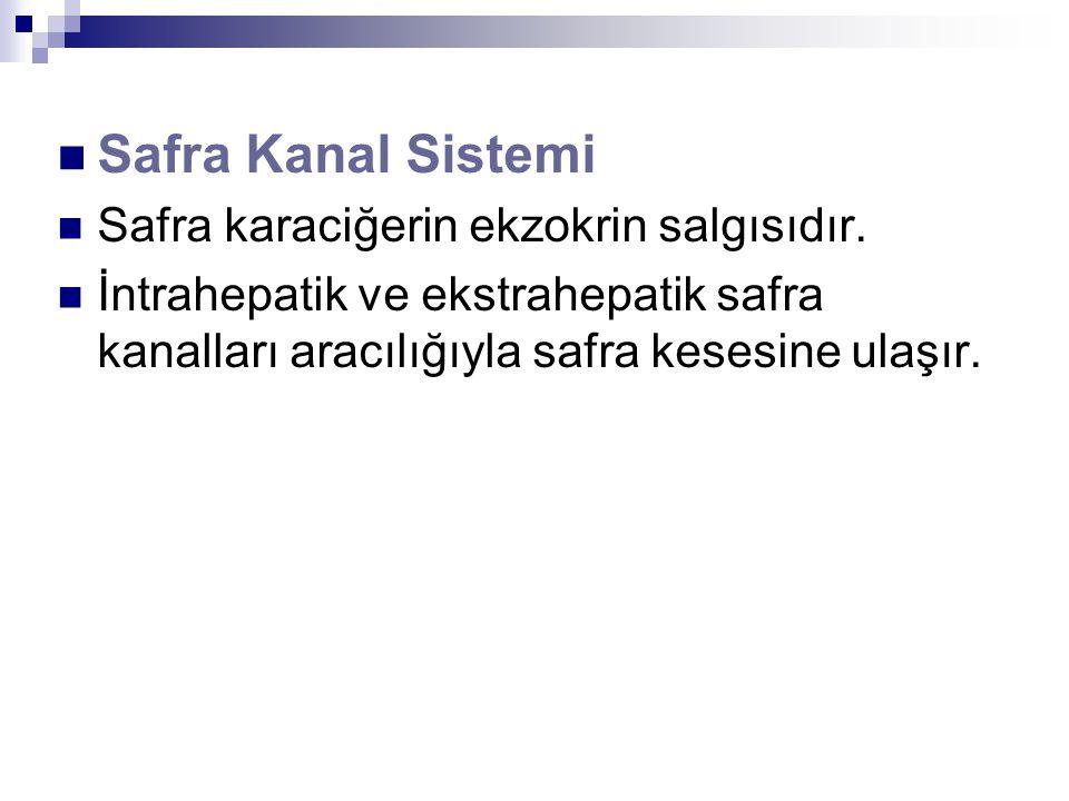 Safra Kanal Sistemi Safra karaciğerin ekzokrin salgısıdır.