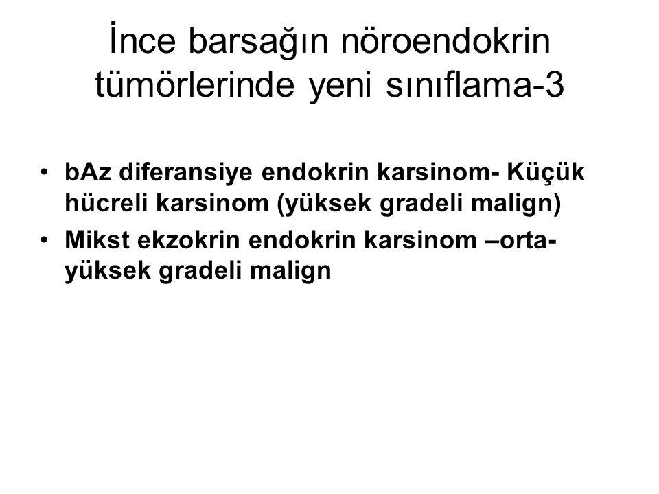 İnce barsağın nöroendokrin tümörlerinde yeni sınıflama-3