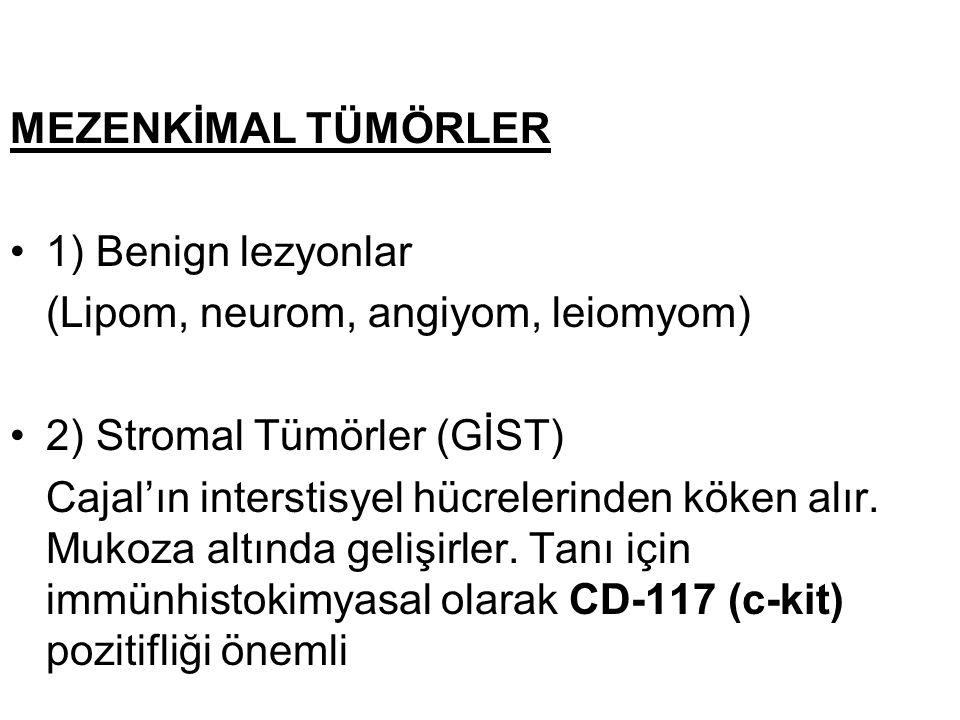 MEZENKİMAL TÜMÖRLER 1) Benign lezyonlar. (Lipom, neurom, angiyom, leiomyom) 2) Stromal Tümörler (GİST)