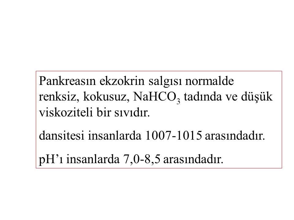 Pankreasın ekzokrin salgısı normalde renksiz, kokusuz, NaHCO3 tadında ve düşük viskoziteli bir sıvıdır.