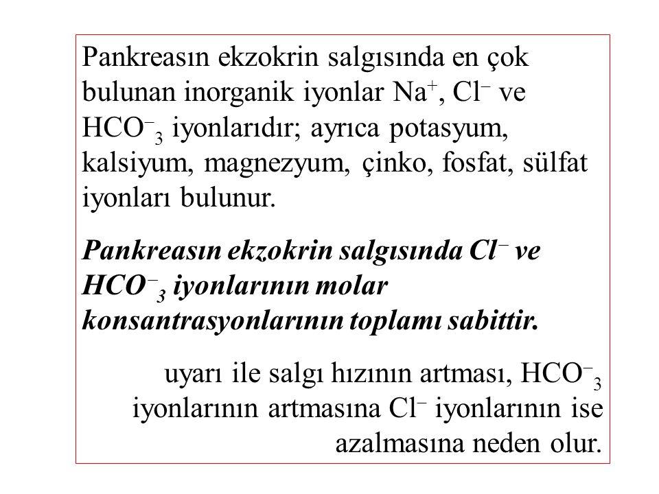 Pankreasın ekzokrin salgısında en çok bulunan inorganik iyonlar Na+, Cl ve HCO3 iyonlarıdır; ayrıca potasyum, kalsiyum, magnezyum, çinko, fosfat, sülfat iyonları bulunur.