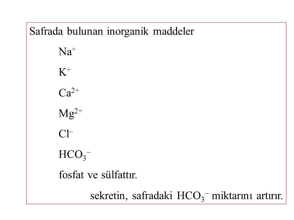 Safrada bulunan inorganik maddeler