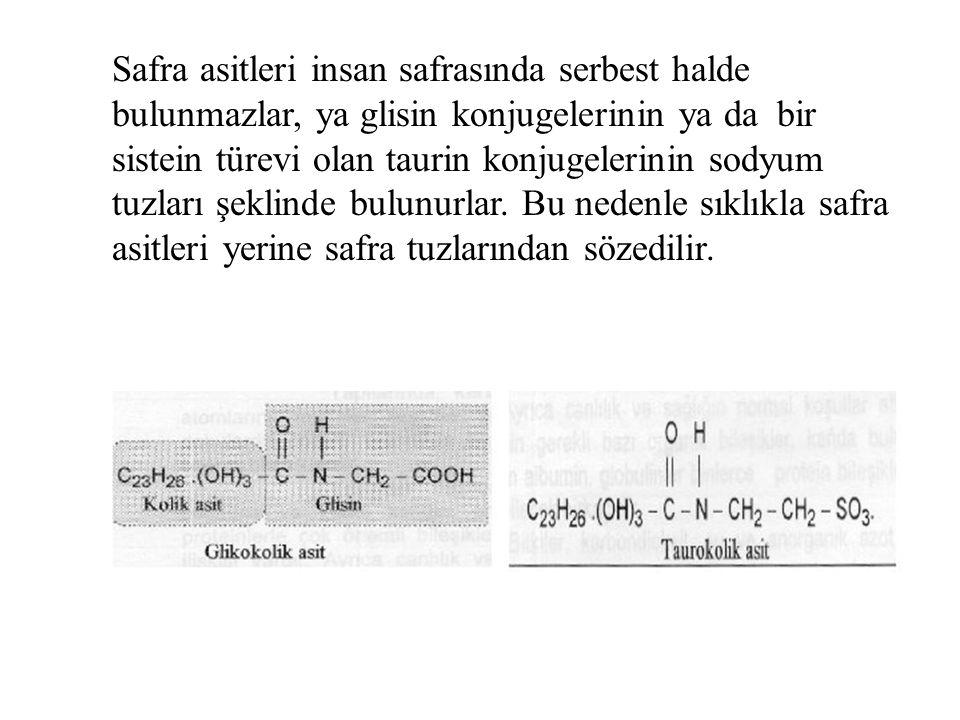 Safra asitleri insan safrasında serbest halde bulunmazlar, ya glisin konjugelerinin ya da bir sistein türevi olan taurin konjugelerinin sodyum tuzları şeklinde bulunurlar.
