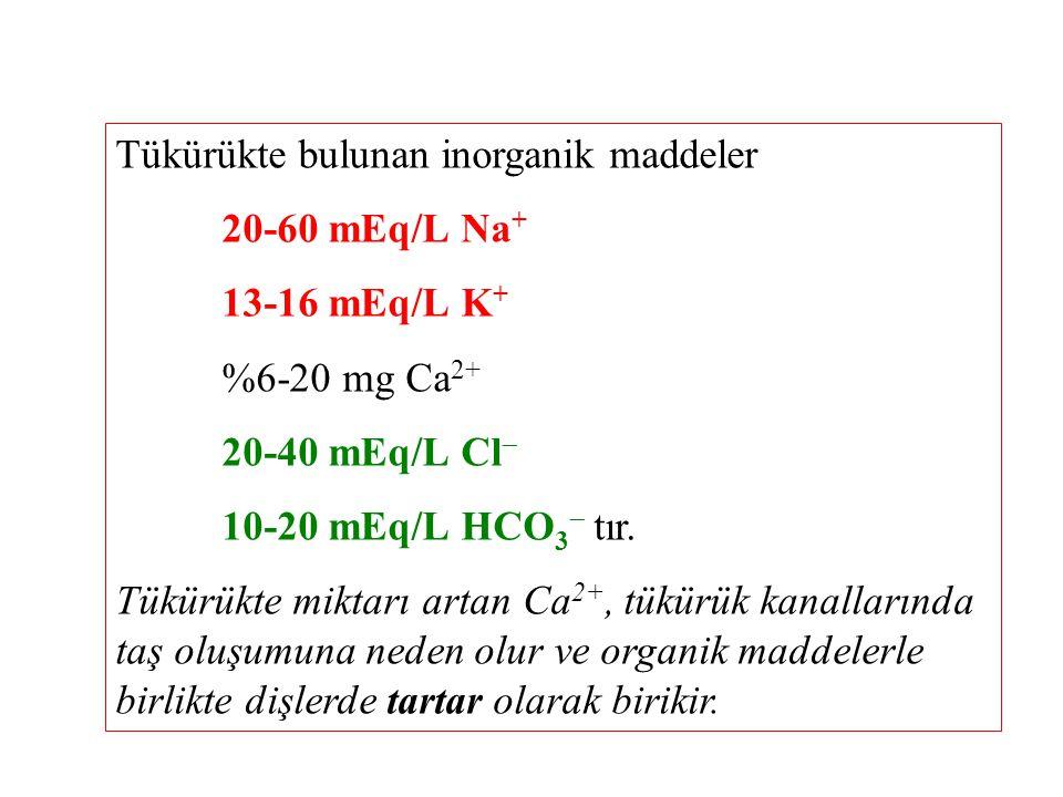 Tükürükte bulunan inorganik maddeler