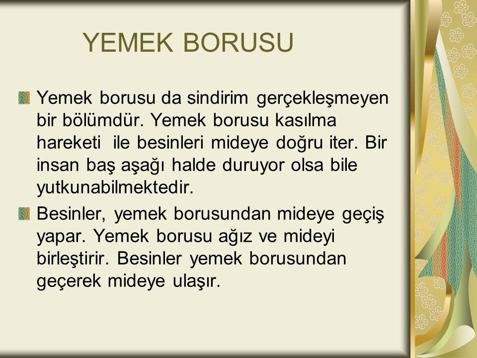 YEMEK BORUSU