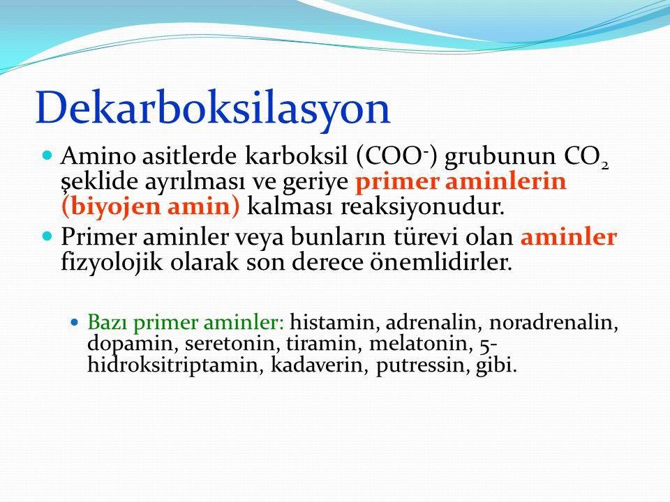 Dekarboksilasyon Amino asitlerde karboksil (COO-) grubunun CO2 şeklide ayrılması ve geriye primer aminlerin (biyojen amin) kalması reaksiyonudur.