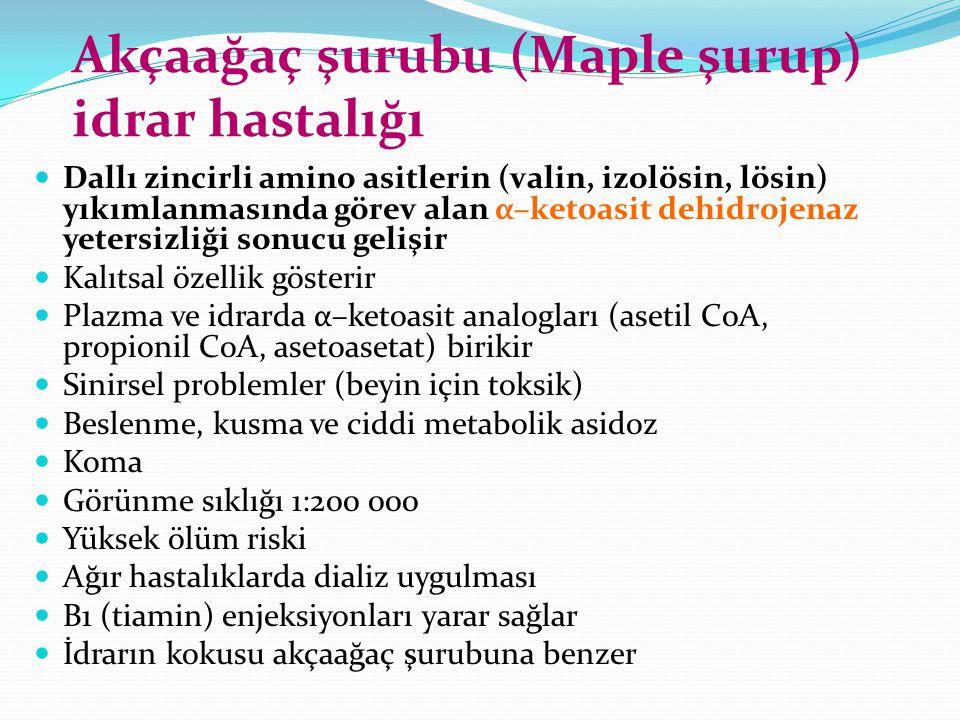 Akçaağaç şurubu (Maple şurup) idrar hastalığı
