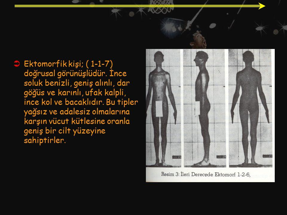 Ektomorfik kişi; ( 1-1-7) doğrusal görünüşlüdür