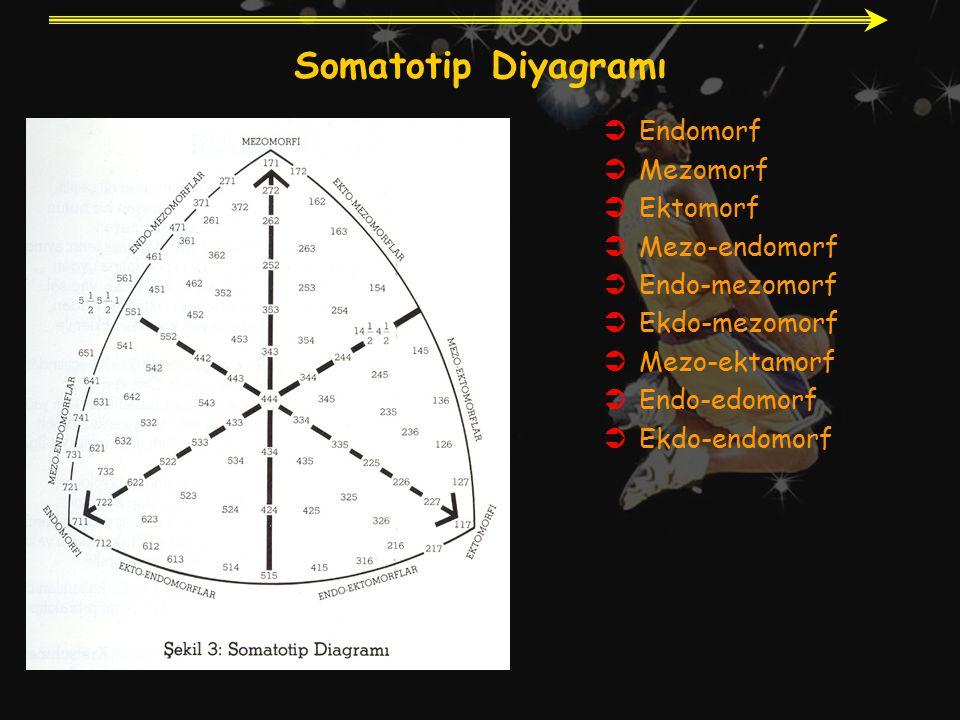 Somatotip Diyagramı Endomorf Mezomorf Ektomorf Mezo-endomorf