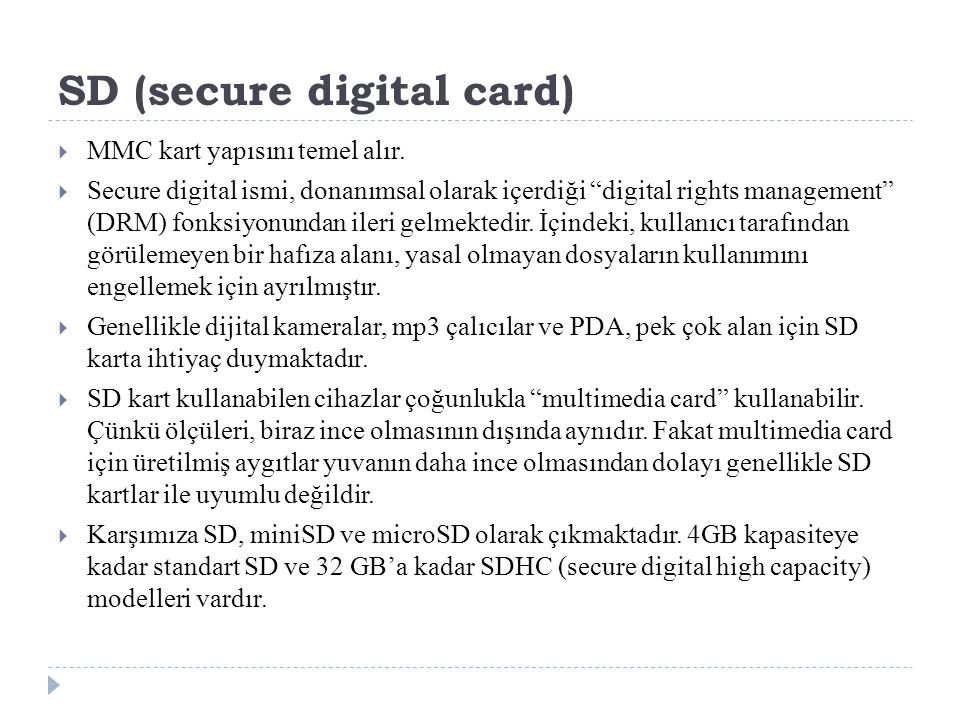 SD (secure digital card)
