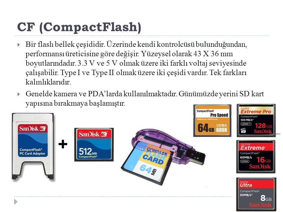 CF (CompactFlash)