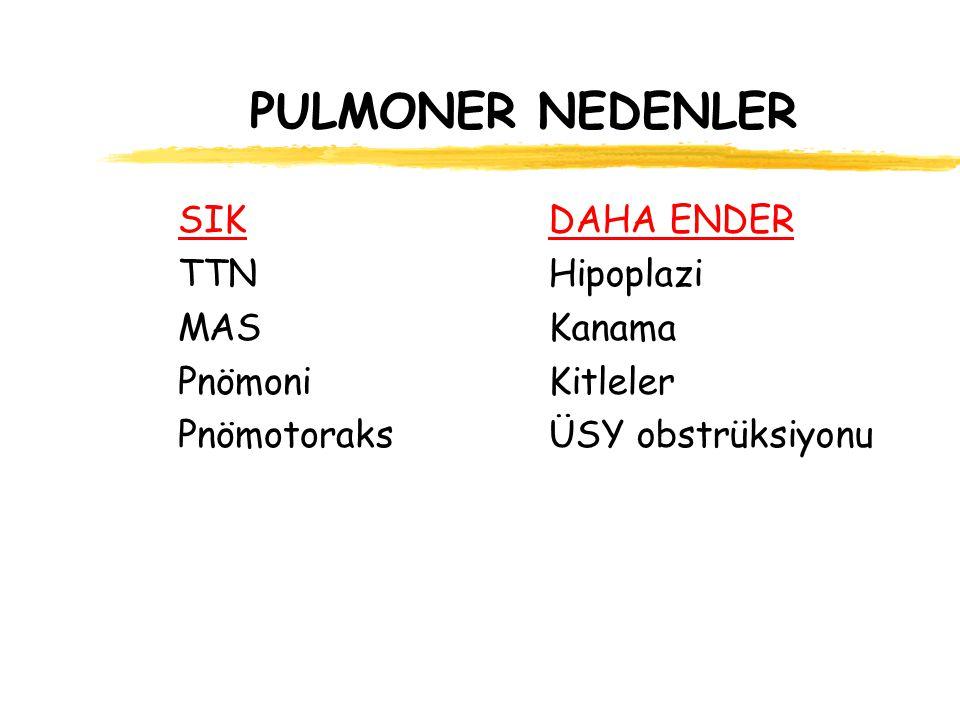 PULMONER NEDENLER SIK TTN MAS Pnömoni Pnömotoraks DAHA ENDER Hipoplazi