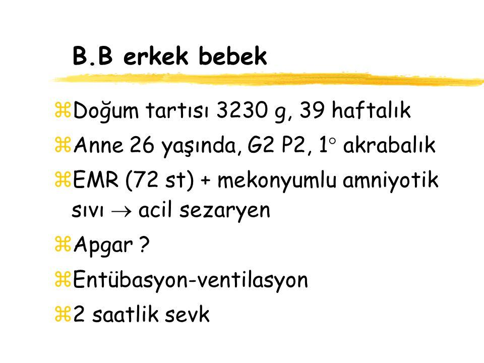 B.B erkek bebek Doğum tartısı 3230 g, 39 haftalık