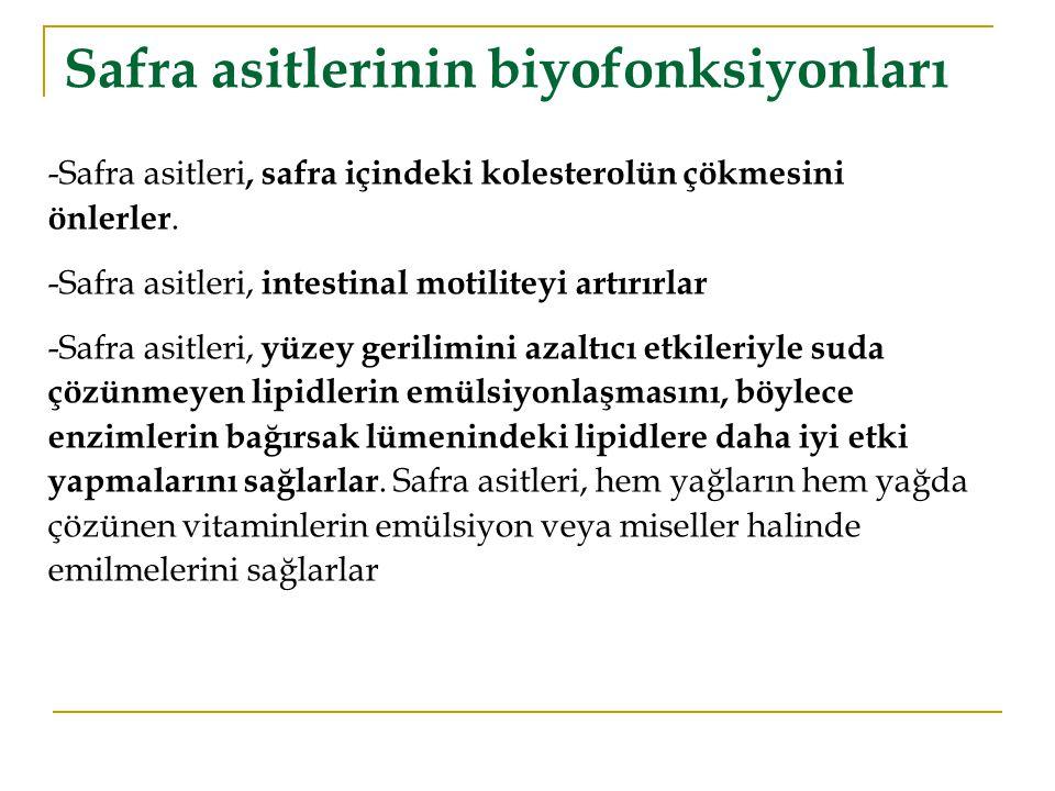 Safra asitlerinin biyofonksiyonları