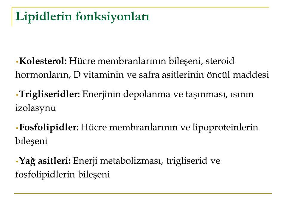 Lipidlerin fonksiyonları
