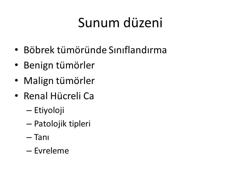 Sunum düzeni Böbrek tümöründe Sınıflandırma Benign tümörler