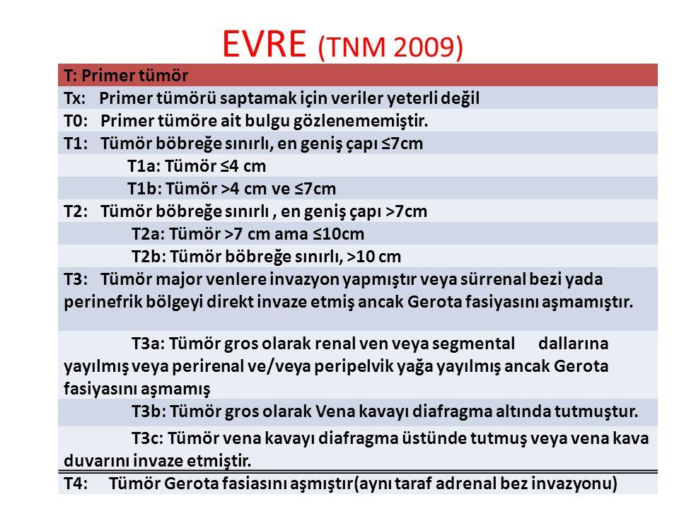 EVRE (TNM 2009) T: Primer tümör