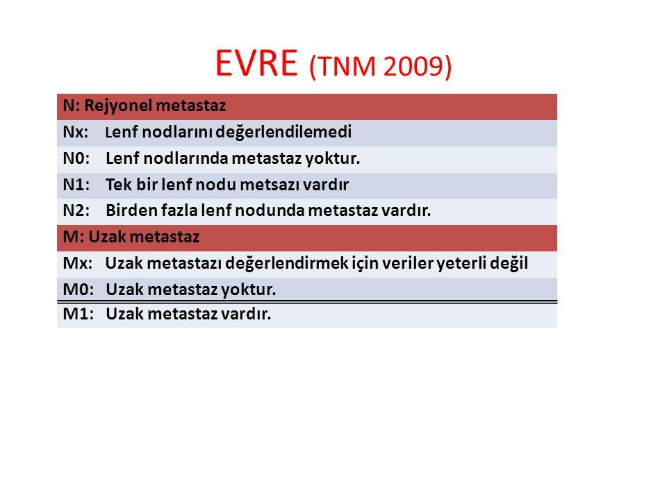 EVRE (TNM 2009) N: Rejyonel metastaz