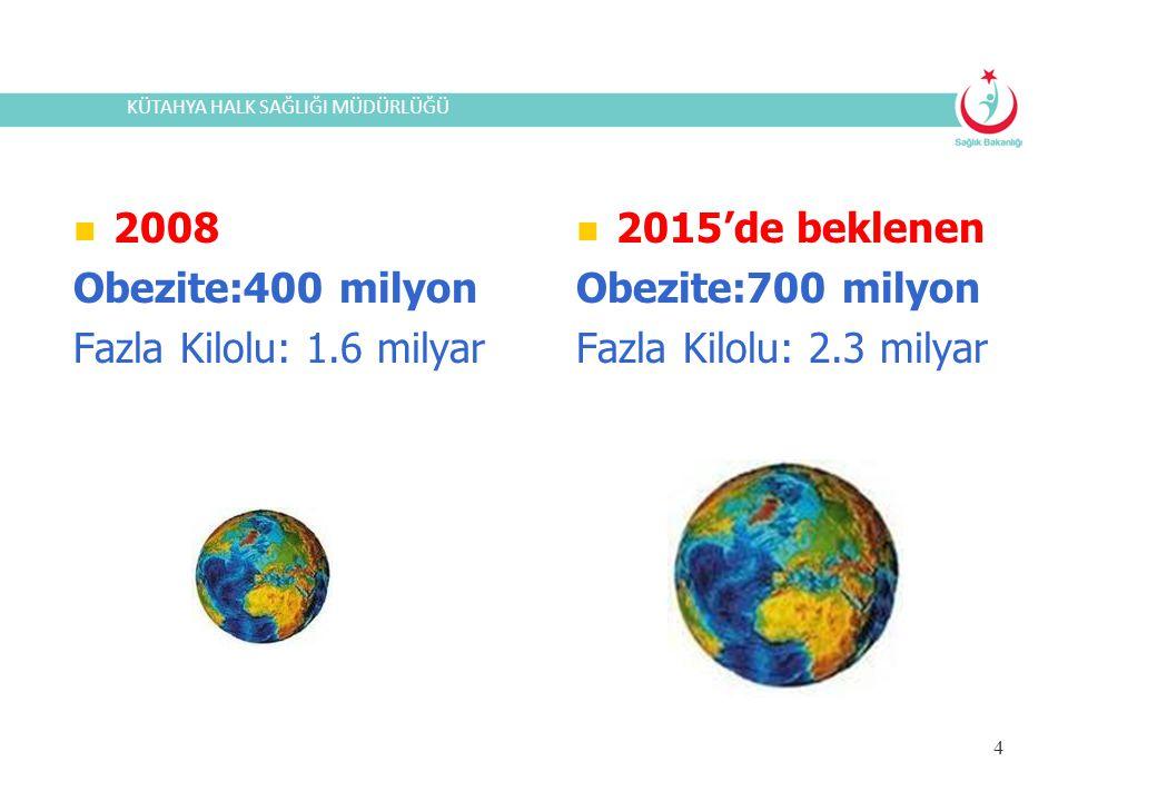2008 Obezite:400 milyon Fazla Kilolu: 1.6 milyar 2015'de beklenen