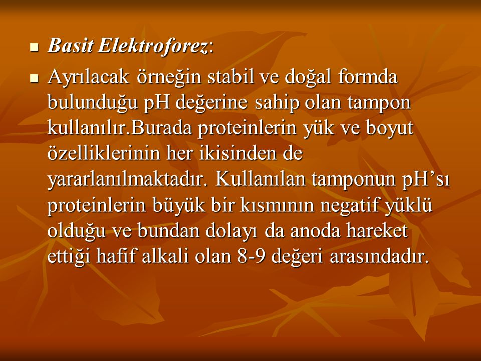 Basit Elektroforez: