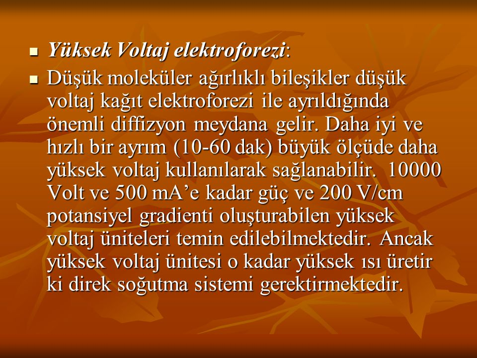 Yüksek Voltaj elektroforezi: