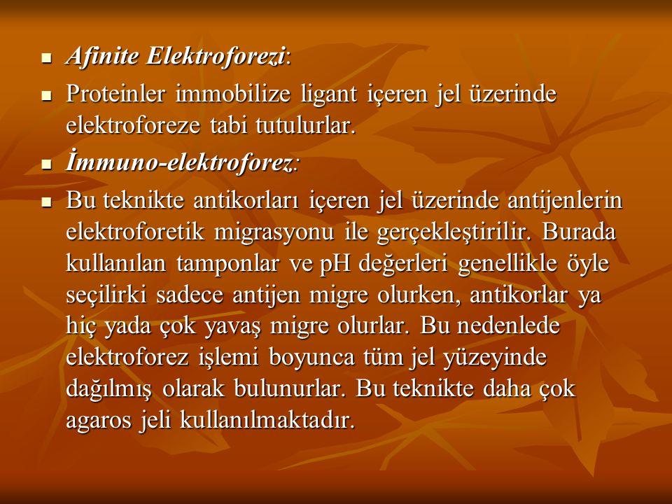 Afinite Elektroforezi: