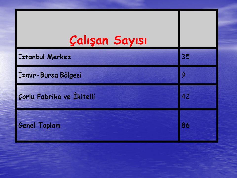 Çalışan Sayısı İstanbul Merkez 35 İzmir-Bursa Bölgesi 9