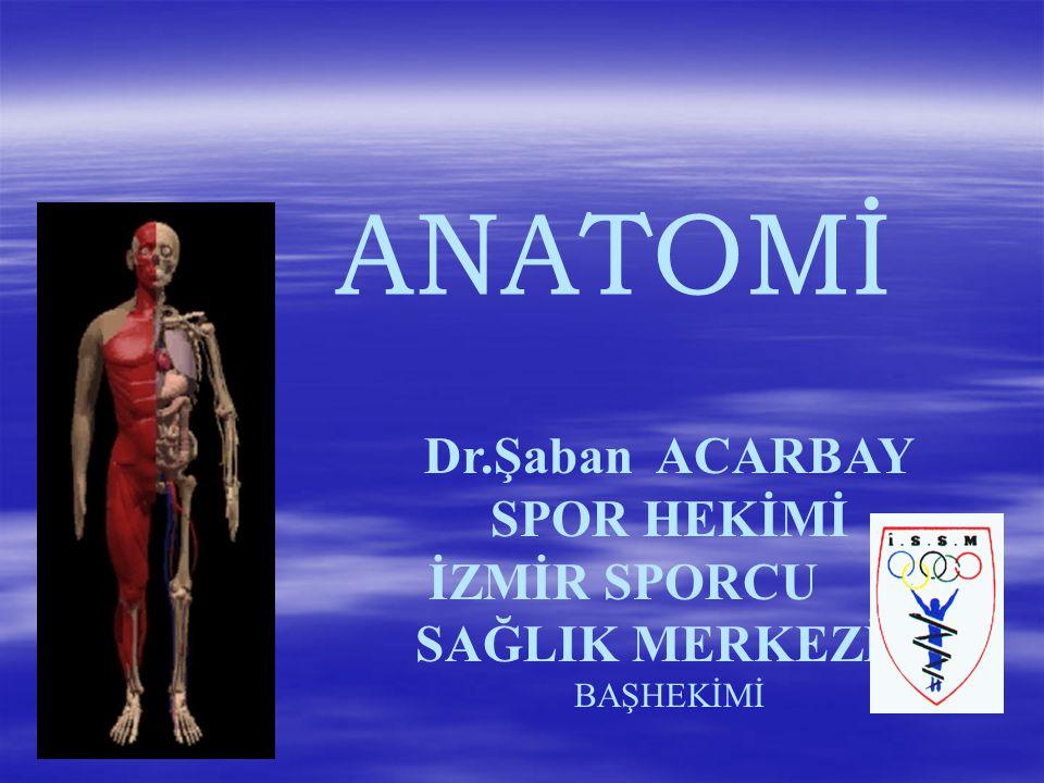 ANATOMİ Dr.Şaban ACARBAY SPOR HEKİMİ İZMİR SPORCU SAĞLIK MERKEZİ