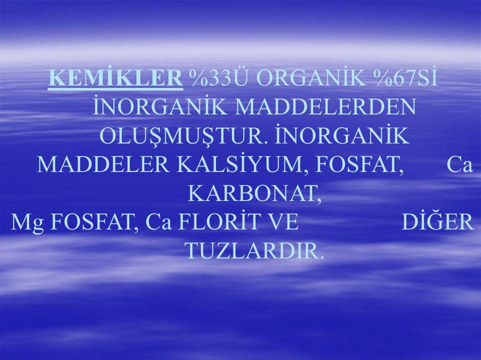 Mg FOSFAT, Ca FLORİT VE DİĞER TUZLARDIR.