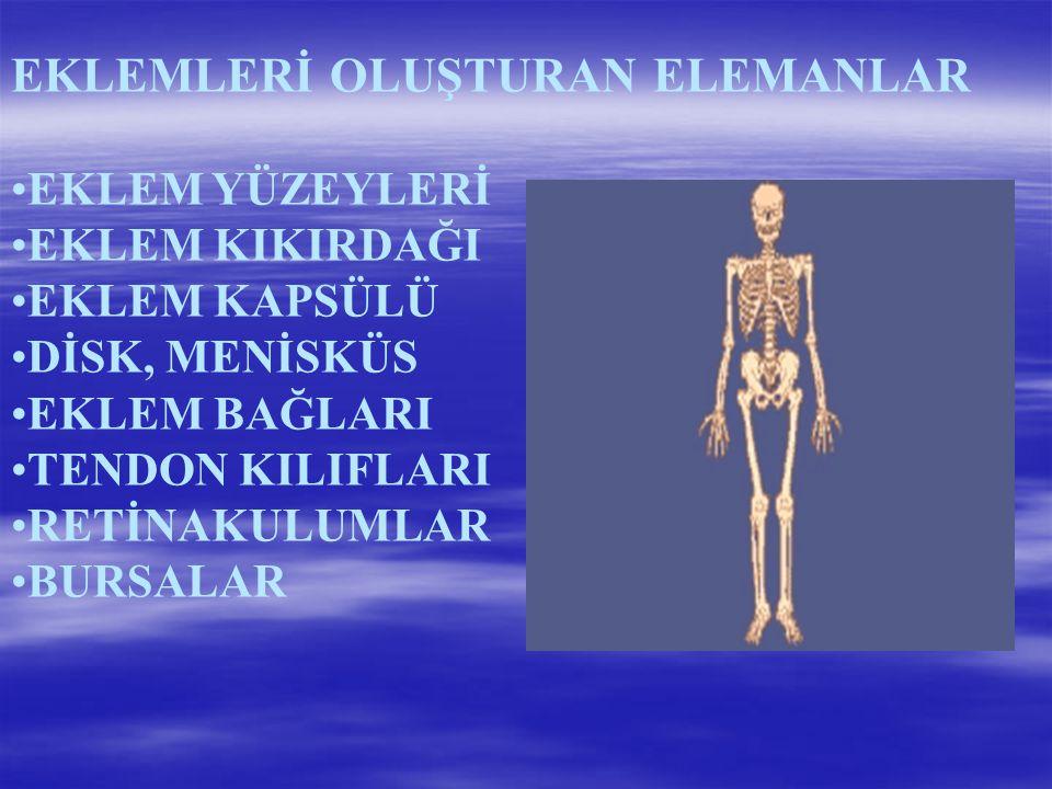 EKLEMLERİ OLUŞTURAN ELEMANLAR