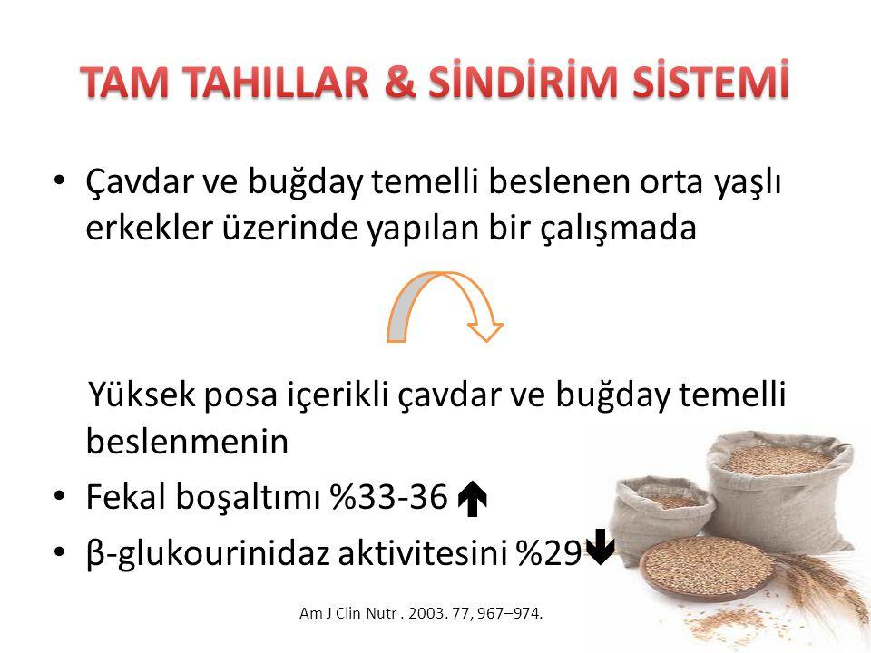 TAM TAHILLAR & SİNDİRİM SİSTEMİ