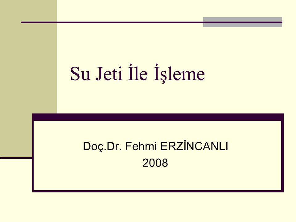 Doç.Dr. Fehmi ERZİNCANLI 2008