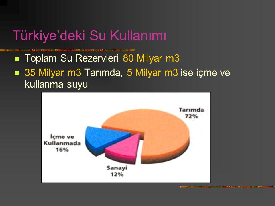 Türkiye'deki Su Kullanımı