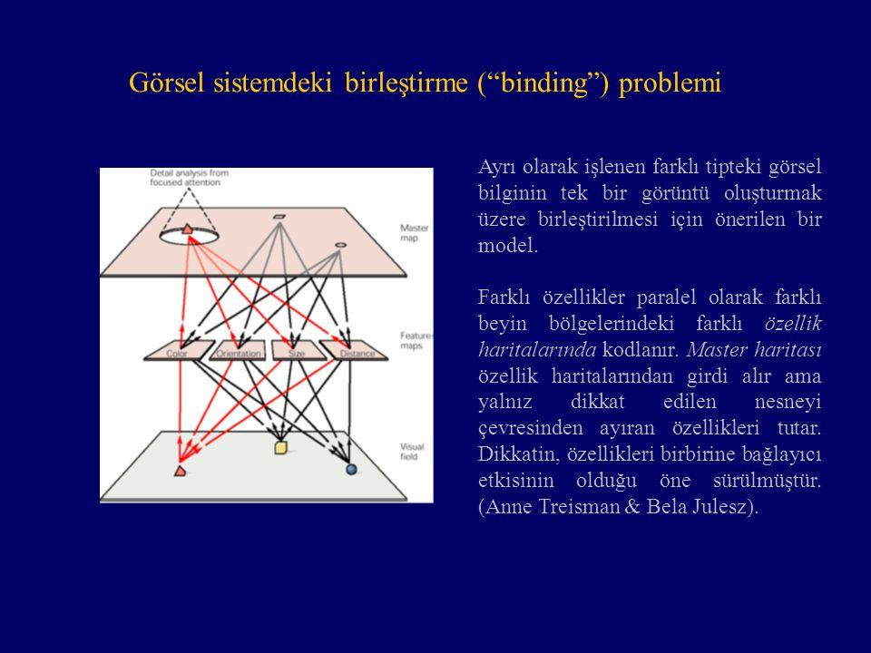 Görsel sistemdeki birleştirme ( binding ) problemi