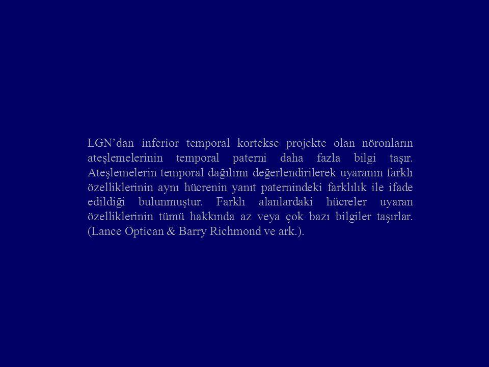 LGN'dan inferior temporal kortekse projekte olan nöronların ateşlemelerinin temporal paterni daha fazla bilgi taşır.