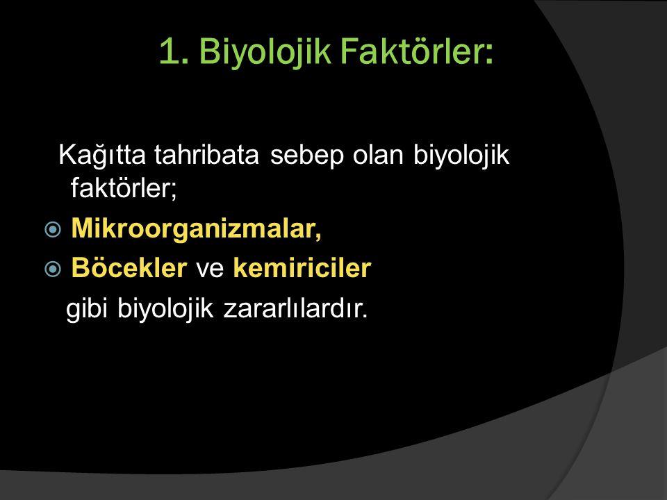 1. Biyolojik Faktörler: Kağıtta tahribata sebep olan biyolojik faktörler; Mikroorganizmalar, Böcekler ve kemiriciler.