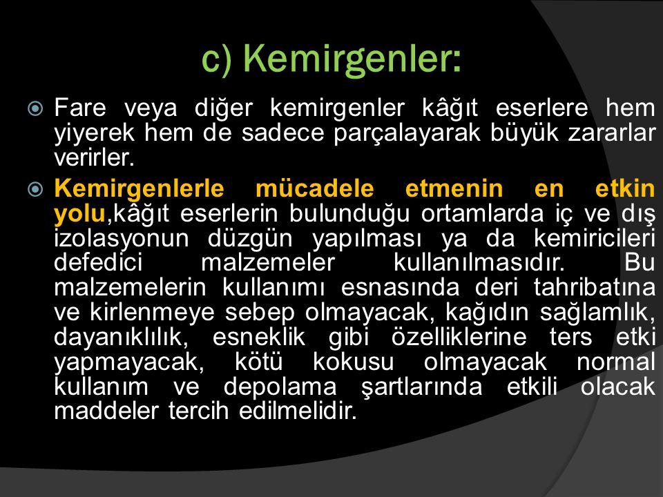 c) Kemirgenler: Fare veya diğer kemirgenler kâğıt eserlere hem yiyerek hem de sadece parçalayarak büyük zararlar verirler.